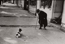 Street Photography / by Dawn Stonebraker