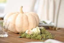 thanksgiving / Thanksgiving dinner & brunch decorations, quotes & recipes / by Julie Blanner