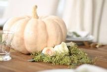 thanksgiving / Thanksgiving dinner & brunch decorations, quotes & recipes
