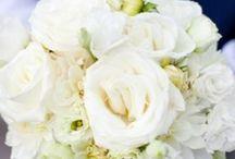 wedding!!!! / by Alicia Croker