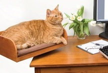 cat stuff n furniture / cool stuff for cats or that has a cat motif / by Rivka da Cat
