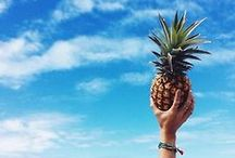 Summer is here !! / All about summer, beach, ocean, palm trees, nice drinks well you get the picture !