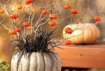 Tricks&Treats / Halloween - and all that goes with it!
