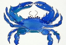 Crabs..Crabs and more Crabs / by Anne Kepple