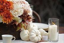 Autumn Breeze / by Kristen Elizabeth