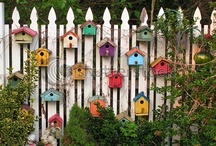 birdhouses / by Janique Sansonnens Bise