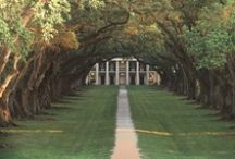 Southern Charm / by Isabeau Grey