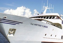 Our Fleet / We are so proud of the variety of boats that are in our fleet- guaranteed one will fit for your event!