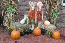 Fall/Halloween / by Brenda Wells Sievers