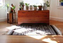 indoor gardens. / inspiring indoor gardens, succulent/orchid care and diy projects  / by Veronica Montemayor