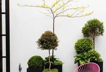 Outdoor Spaces: Details / by Hannah Thomas
