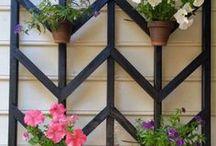 Home ideas: outdoor & garage