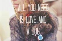 dogs / by Katelyn Carter