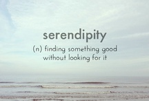 Serendipity / A Collection of Random Cool Things / by Mary Thompson