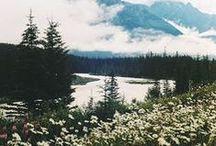 nature & scenery.