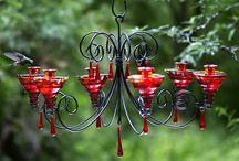 Balcony garden / by Alecia Wardell