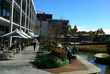 Optus Campus Sydney