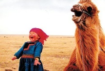 Humor / A good laugh is just as therapeutic as a good cry!  / by Jane McManus