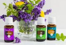 Young Living Essential Oils / What I'm learning and products I use.