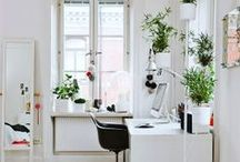 LIFE | HOME & OFFICE / Home Decor, indoors& outdoors,