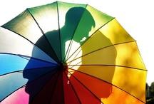 Rainbow / by Susan Yates