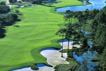 Golf, Tennis, and Beach Resorts / There is something for everyone in your family at our Golf, Tennis, and Beach Resorts. Browse our collection of Gulf Coast vacation rentals that all feature golf, tennis, and beach access.