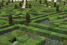 "Labyrinth & Mazes. / God wants us to live our life like, Labyrinth & Mazes, once your in life,""Maze"" figure it out, LOL / by Connie Jean Klein"
