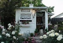 Garden Inspirations / by Donna Perez
