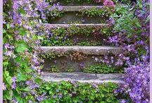 Gardening and Nature