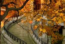 Autumn's in the Air