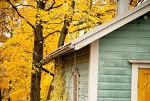 autumn / My favorite season of the year!  autumn, fall / by Ann Cox