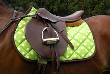 Equine Sport & Products