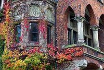 Abandoned #3 / by Barbara Kerley