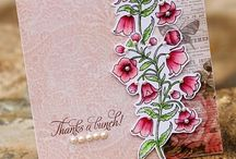 Cards - Thank You / by Brenda Poe