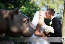 Penn State Weddings