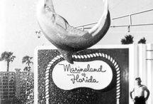 Vintage Florida / by Teri M