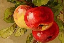 Captured:Watercolor❤☆ / Watercolour paintings...beautiful compositions.... extraordinary works captured!!!!