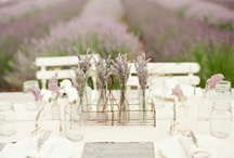 Provence / by Aurelie Lily