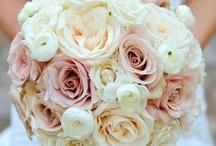 Wedding Flowers / by Andrea Walker