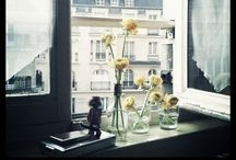 Photography: Love, love, love