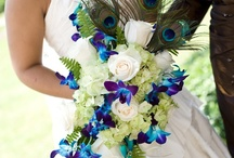 Peacock Wedding Inspiration / by WeddingLovely