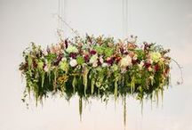 | hanging flowers | / A collection of gorgeous wedding flowers ideas inspiring couples looking for hanging flowers and floral decor