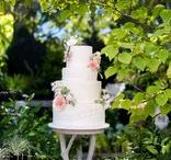 Cakes and Sweets / All kinds of wedding cakes and sweet treats from multi-tiered cakes, naked cakes, cupcakes, dessert bars, pies and more!