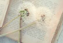 Literary Inspired Wedding / A collection of gorgeous wedding flower and decor ideas inspiring couples looking for literary inspired wedding decor and ideas