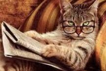 Feline Readers