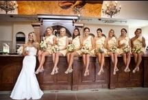 ♥Our Wedding♥ / by Danielle Bennett