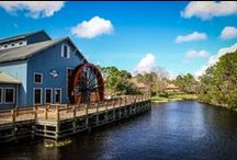 Disney's Port Orleans Resort - Riverside / Disney's Port Orleans Riverside is themed around the antebellum south along the Missisippi river. This massive resort is divided into two distinct sections - Magnolia Bend and Aligator Bayou.