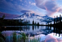 Beauty of Creation