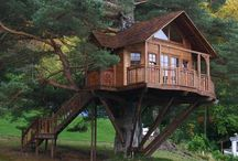 Tree Houses, Astonishing