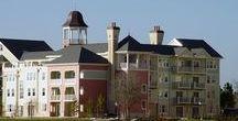 Disney's Saratoga Springs Resort & Spa + Treehouse Villas